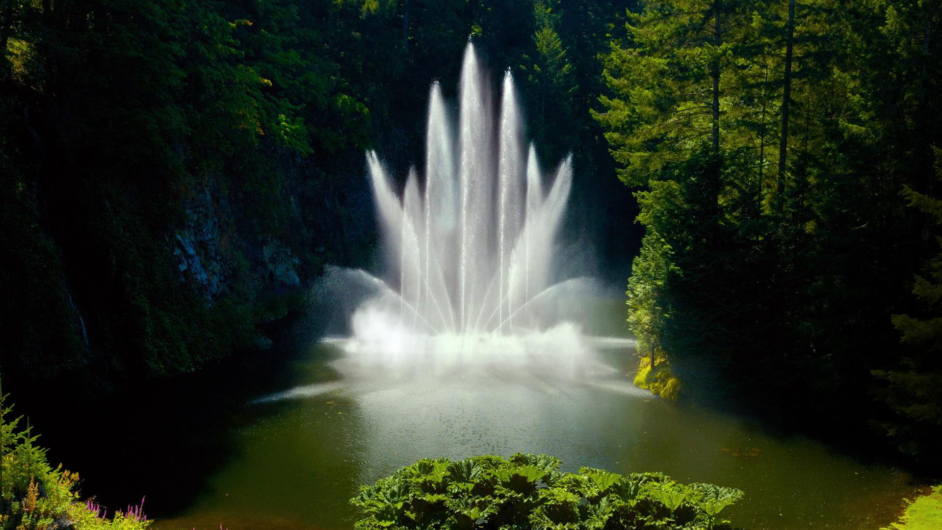 一股喷泉温暖整个寒冬