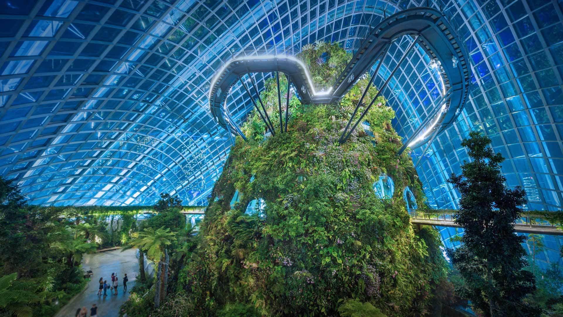 新加坡的未来愿景