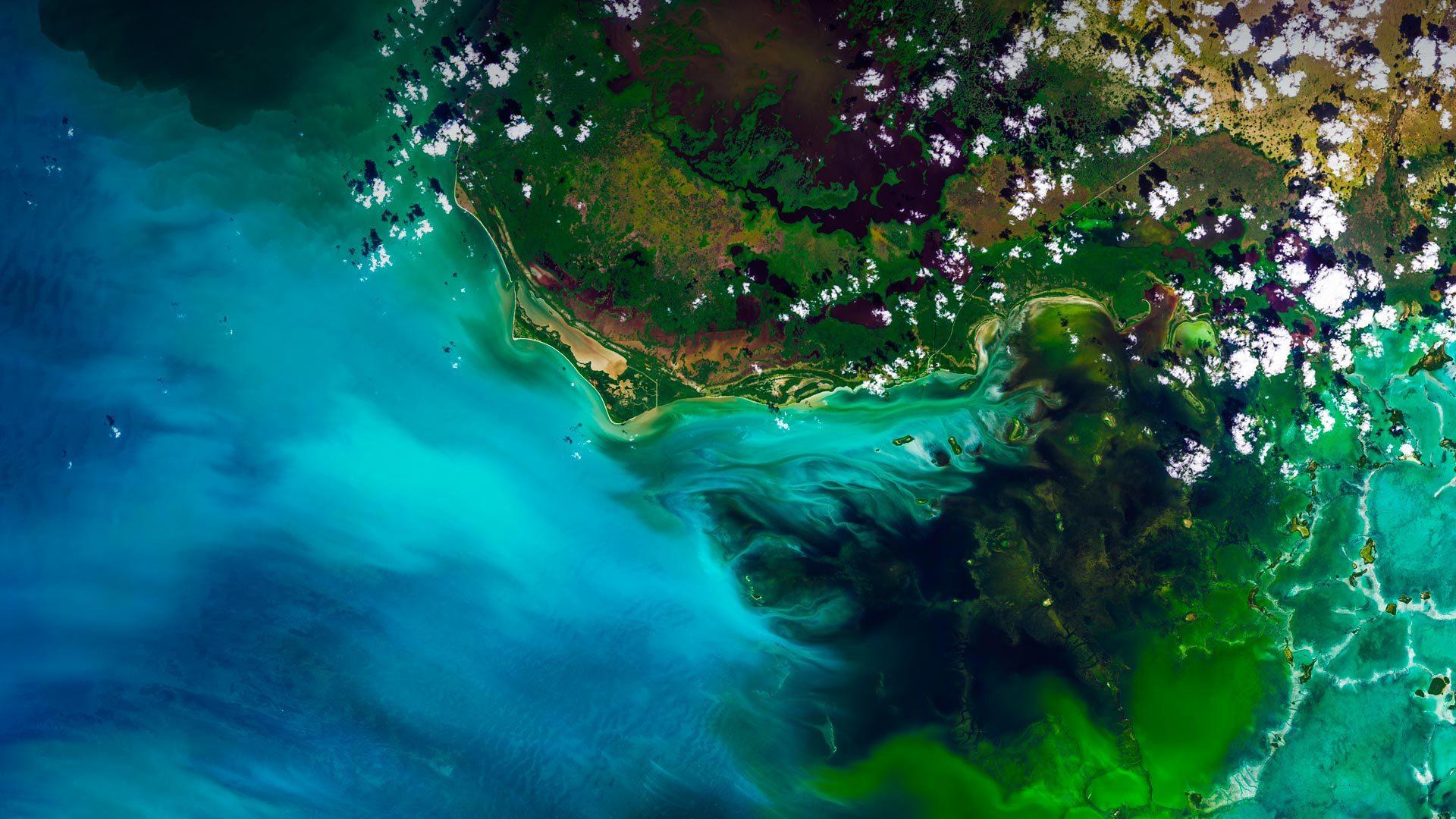 美国最大的亚热带荒原