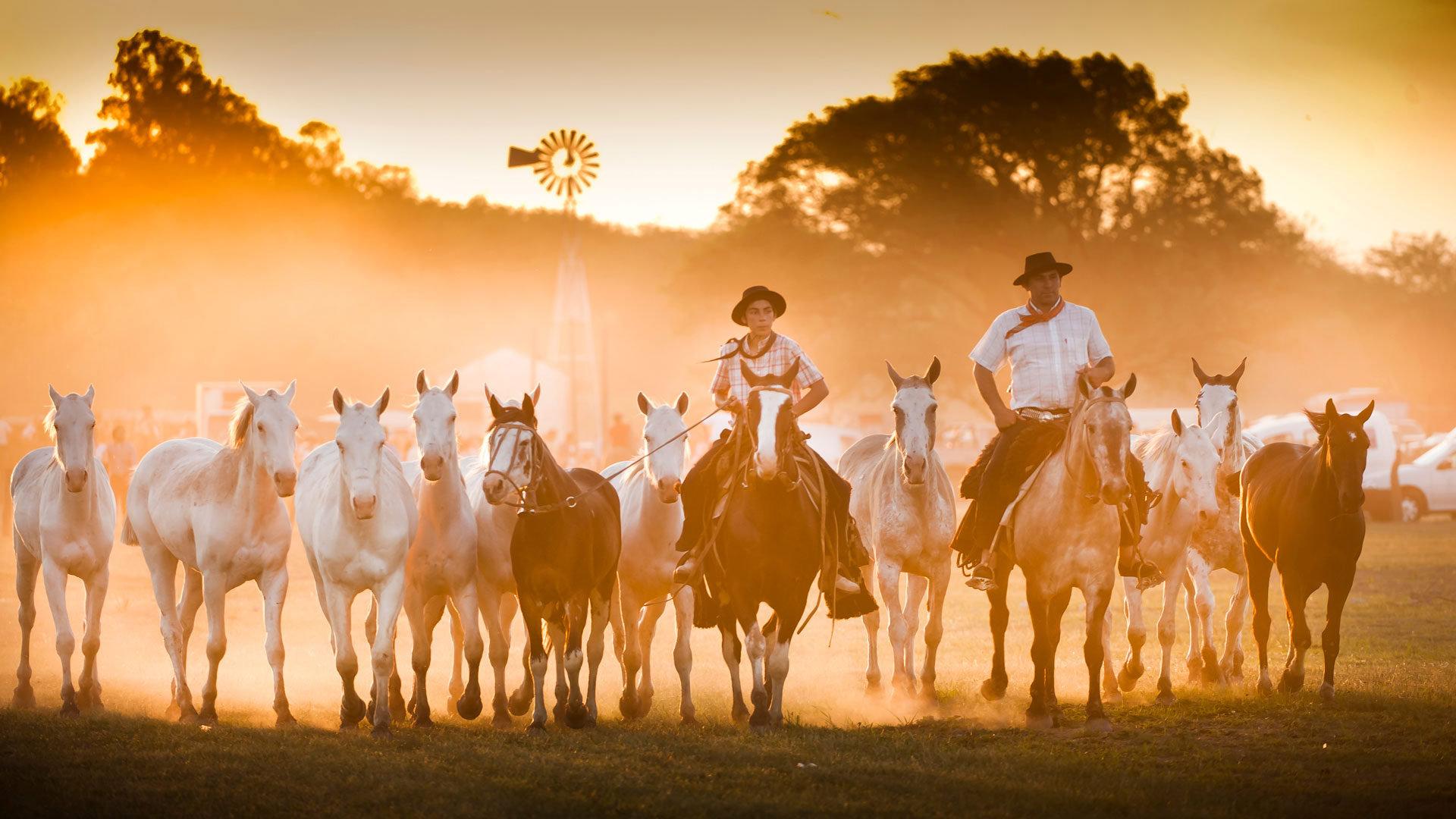 骑马游行的盛大派对