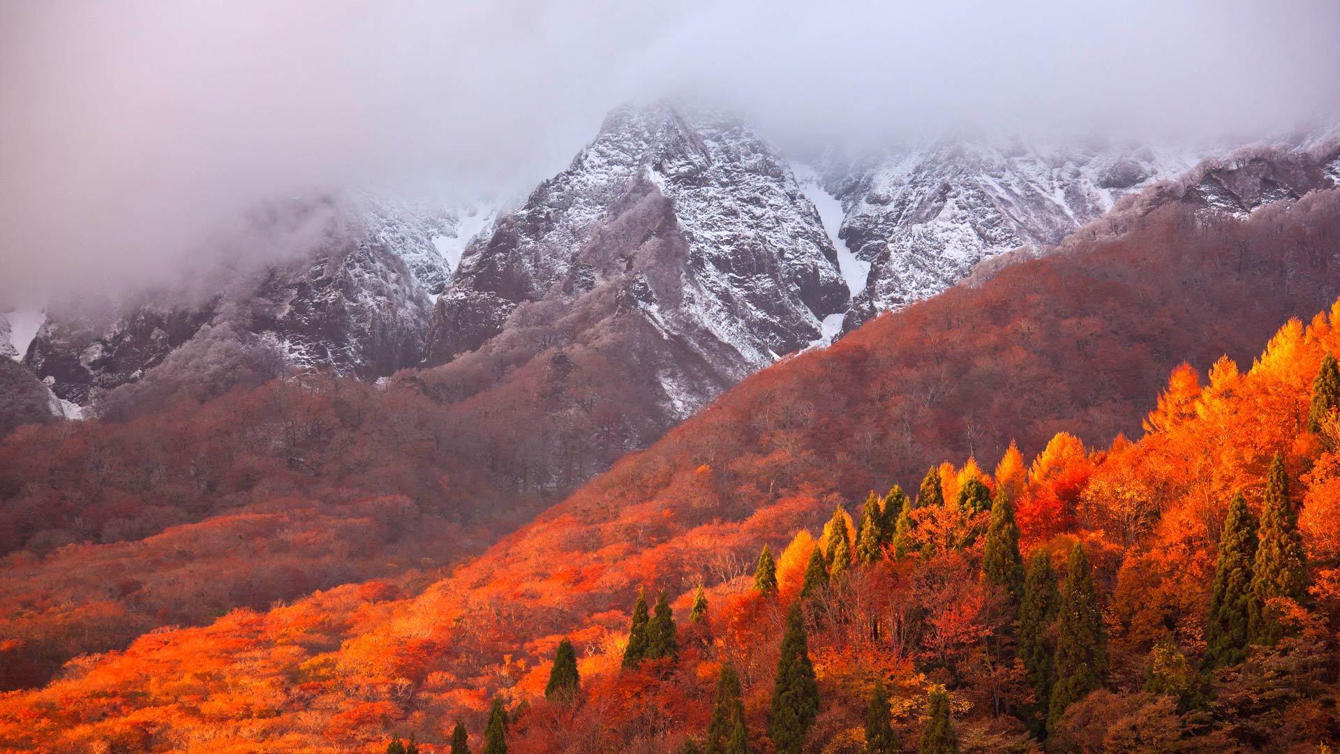 一座叫做大山的大山