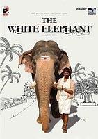白象(2009)