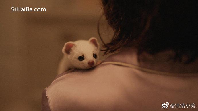 奇幻英美剧《黑暗物质》第一季完结 电影推荐 第2张