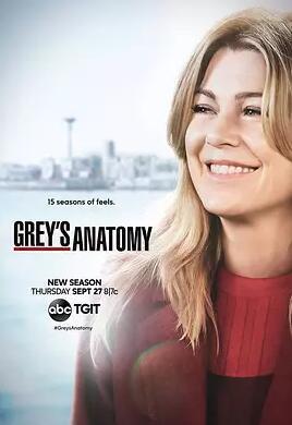實習醫生格蕾第十五季