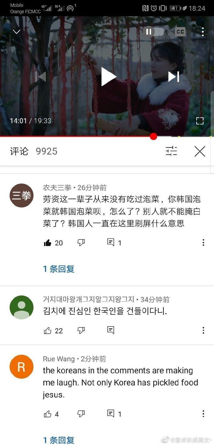 如何看待李子柒视频因制作泡菜,被韩国网友围攻一事?